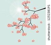 sakura blossoms on a blue... | Shutterstock . vector #125238191