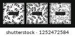 black and white botanical... | Shutterstock .eps vector #1252472584