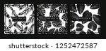 black and white botanical... | Shutterstock .eps vector #1252472587