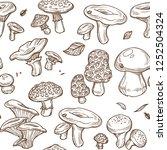 mushrooms sketch seamless... | Shutterstock .eps vector #1252504324