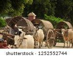 bagan  myanmar   november 18 ... | Shutterstock . vector #1252552744