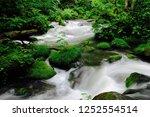 "tourist attraction ""oirase... | Shutterstock . vector #1252554514"