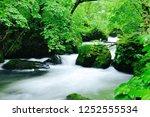 "tourist attraction ""oirase... | Shutterstock . vector #1252555534"