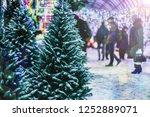 Sale Of Christmas Trees....