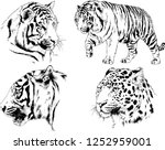 set of vector drawings on the... | Shutterstock .eps vector #1252959001