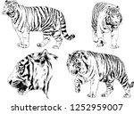 set of vector drawings on the... | Shutterstock .eps vector #1252959007