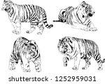 set of vector drawings on the... | Shutterstock .eps vector #1252959031
