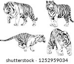 set of vector drawings on the... | Shutterstock .eps vector #1252959034