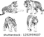 set of vector drawings on the... | Shutterstock .eps vector #1252959037