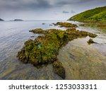 tropical beach  stone and beach ... | Shutterstock . vector #1253033311