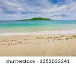 tropical beach  stone and beach ... | Shutterstock . vector #1253033341