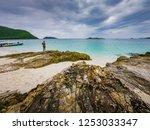 tropical beach  stone and beach ... | Shutterstock . vector #1253033347