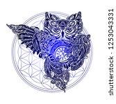ornate occult spiritual symbols ...   Shutterstock .eps vector #1253043331