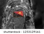 flag of papua new guinea on... | Shutterstock . vector #1253129161