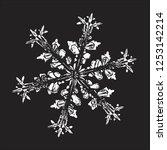 white snowflake isolated on... | Shutterstock .eps vector #1253142214