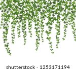 green ivy. creeper wall... | Shutterstock .eps vector #1253171194