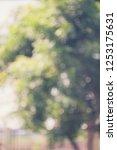 reclaimed background bokeh blur | Shutterstock . vector #1253175631