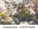 reclaimed background bokeh blur | Shutterstock . vector #1253175634