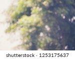 reclaimed background bokeh blur | Shutterstock . vector #1253175637
