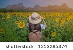 woman with sunflowers. teenage... | Shutterstock . vector #1253285374