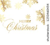merry christmas greeting card... | Shutterstock .eps vector #1253460454