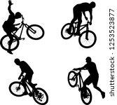 silhouette of male doing bike... | Shutterstock .eps vector #1253523877