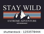 mountain slogan typography... | Shutterstock .eps vector #1253578444