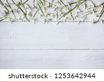 spring flowers snowdrops on... | Shutterstock . vector #1253642944