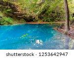 source of urederra river in...   Shutterstock . vector #1253642947