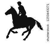 Equestrian Event. Silhouette O...