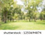 abstract blur city park bokeh... | Shutterstock . vector #1253694874