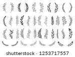 hand drawn set of floral  plant ... | Shutterstock .eps vector #1253717557