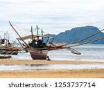 boat on the beach in coron ... | Shutterstock . vector #1253737714