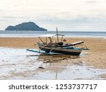 boat on the beach in coron ... | Shutterstock . vector #1253737717