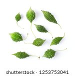 balsam apple  balsam pear ... | Shutterstock . vector #1253753041