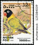 Small photo of AFGHAN - CIRCA 1999: A stamp printed in Afghan shows agapornis personata, circa 1999