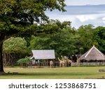 nov 15 2018 tourists feeding... | Shutterstock . vector #1253868751