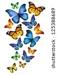 Stock photo many different butterflies isolated on white background 125388689