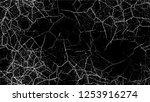 grunge watercolor dry brush... | Shutterstock .eps vector #1253916274