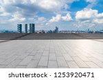 panoramic skyline and modern... | Shutterstock . vector #1253920471