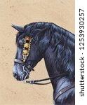 Friesian Horse Blacky. Animal...