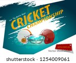 cricket match concept with ... | Shutterstock .eps vector #1254009061