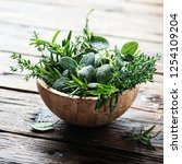 mix of herbs  sage  thyme ... | Shutterstock . vector #1254109204