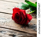 amazing red rose on the wooden... | Shutterstock . vector #1254109687