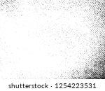 vector grunge textile... | Shutterstock .eps vector #1254223531