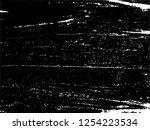 vector grunge textile... | Shutterstock .eps vector #1254223534