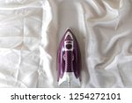 lilac iron on a piece of white... | Shutterstock . vector #1254272101