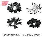 broken glass  cracks  bullet... | Shutterstock .eps vector #1254294904