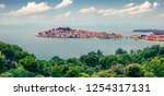 panoramic summer view of... | Shutterstock . vector #1254317131