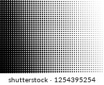 dots background. points grunge... | Shutterstock .eps vector #1254395254